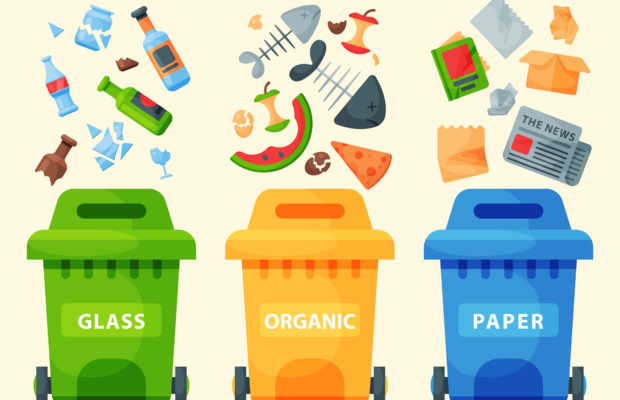 Quiz: What Type of Recycler Are You?